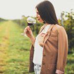 Diferentes fases en una cata de vinos